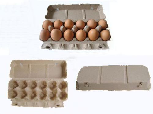江门鸡蛋托