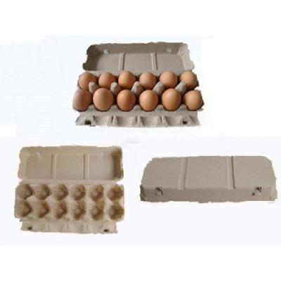 江门鸡蛋托有哪些类型